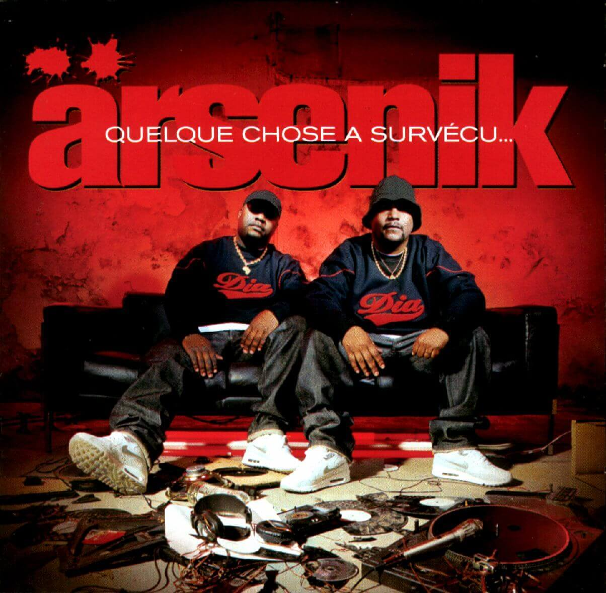 Arsenik-Quelque-chose-a-survecu-Pochette-CD