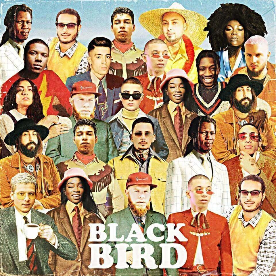 blackbird-dj-elite